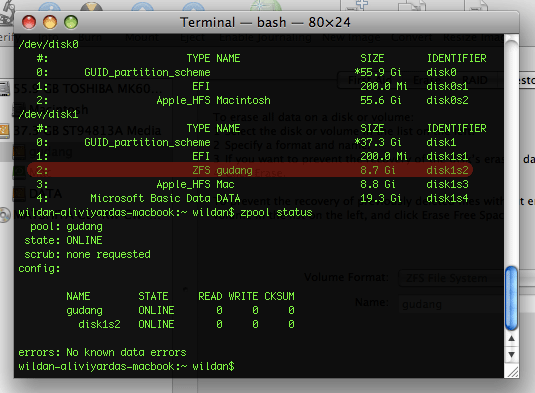 zfs-terminal.png